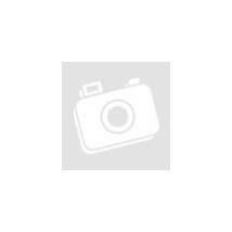 FLASH univerzális LED lámpa